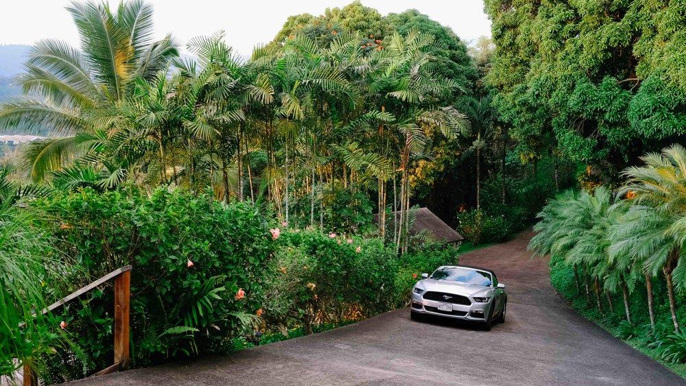 Our Mustang convertible car rental