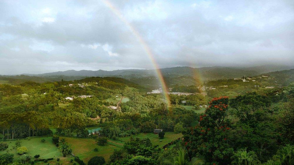 A rainbow in the valley in Kauai