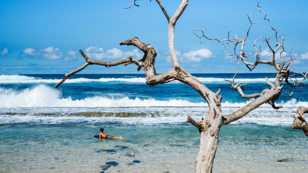 """Maui, Hawaii Travel Guide. Travel photography and guide by © Natasha Lequepeys for """"And Then I Met Yoko"""". #Mauiitinerary #Maui #Mauitravelguide #travelblog #Mauiphotography"""