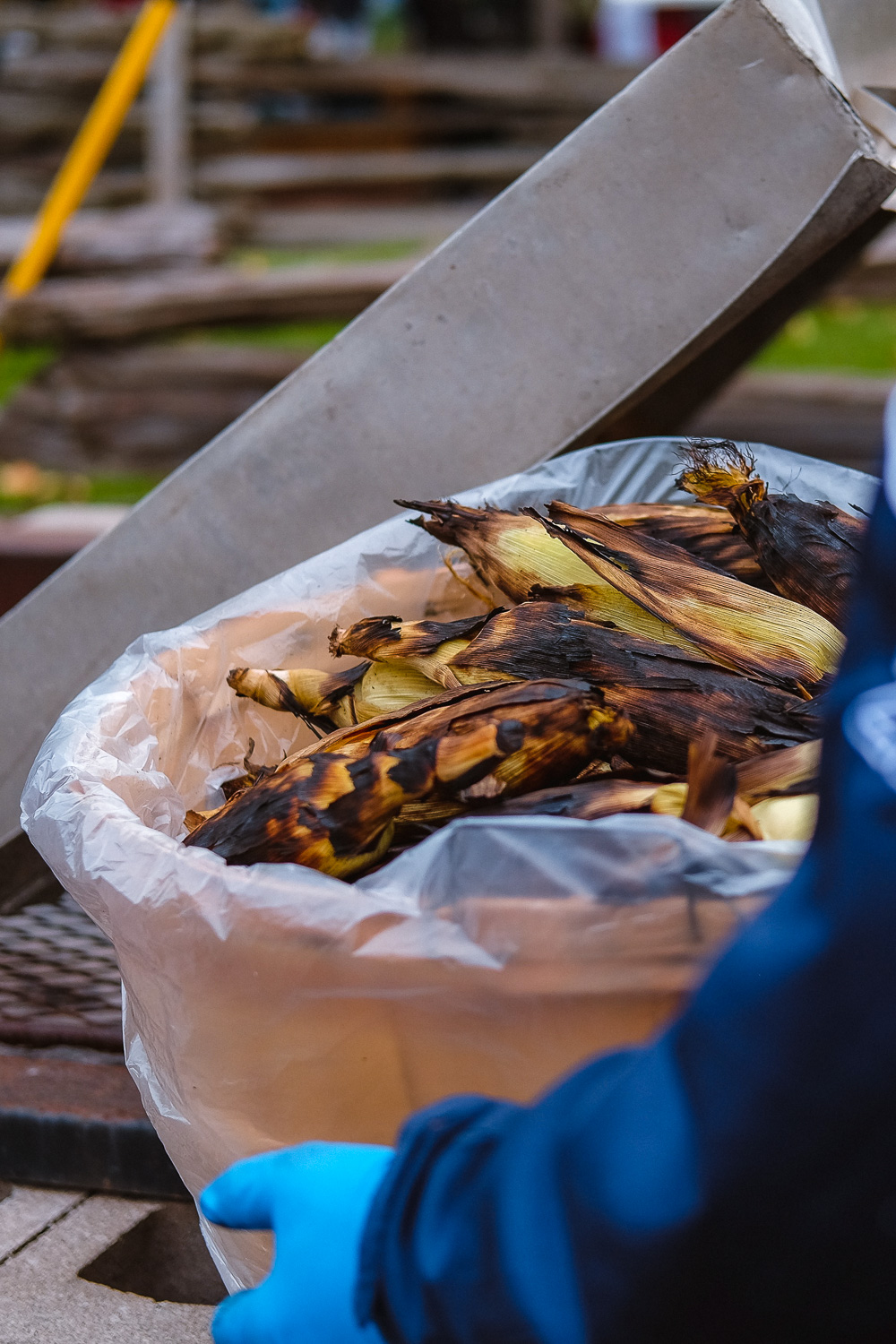 A basket of charred corn ready for eating