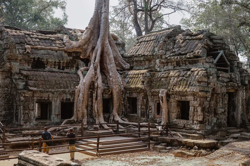 """The iconic temple of Ta Prohm. Where jungle emerges with the temple, Siem Reap. Travel photography and guide by © Natasha Lequepeys for """"And Then I Met Yoko"""". #siemreap #angkorwat #taprohm #travelguide #travelblog #travelitinerary #itinerary #siemreapitinerary #seasia #cambodia #travelcambodia #travelsiemreap #photoblog #travelblogger #travelphotography #landscapephotography #fujifilm #temples #siemreapprivatetour #atv"""
