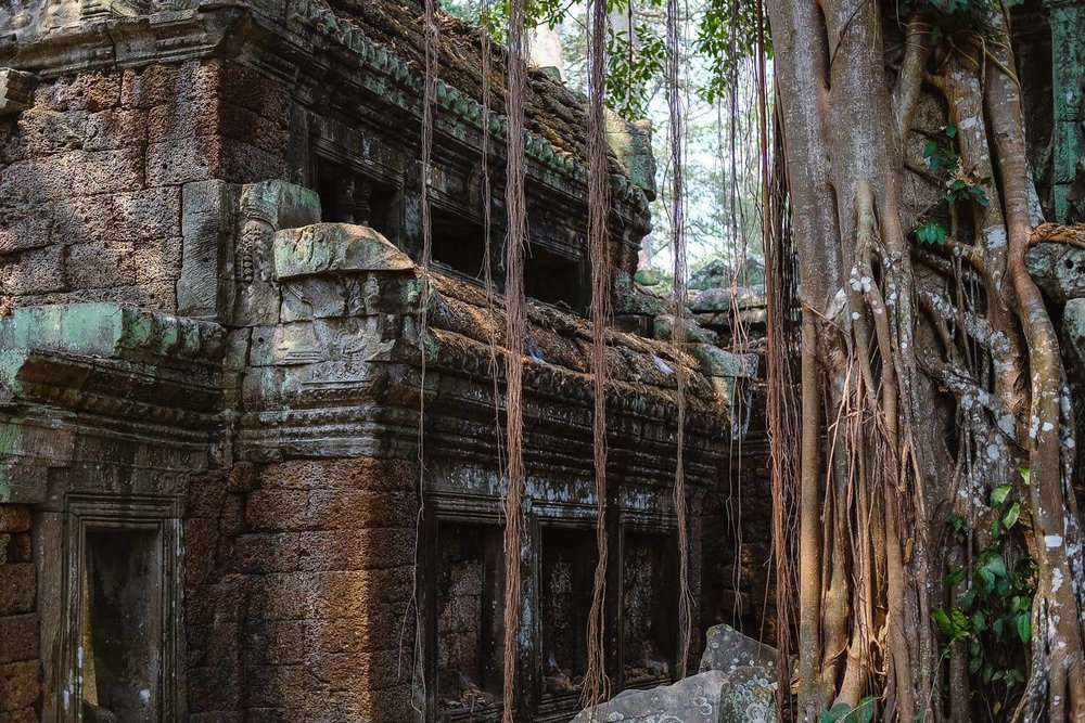 The jungle is slowly taking over Ta Prohm.     #siemreap #taprohm #travelguide #angkorwat #siemreapitinerary #cambodia #travelphotography #landscapephotography #fujifilm #siemreapprivatetour
