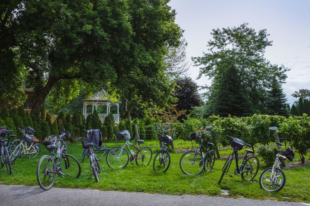 "Renting a bike is a great way to visit Niagara-On-The-Lake. Travel photography and guide by © Natasha Lequepeys for ""And Then I Met Yoko"". #niagara #biketour #ontario #canada #discoverontario #niagaraonthelake #travelguide #photoblog #travelblog #travelphotography #wineries #travelitinerary #fujifilm #historictown #winetour #bicycle #notl #travelblogger #niagaraitinerary #niagaraphotography"