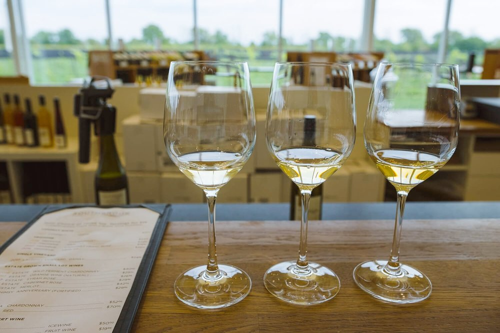 "Southbrook Vineyards tasting room, Niagara-On-The-Lake. Travel photography and guide by © Natasha Lequepeys for ""And Then I Met Yoko"". #niagara #niagarafalls #ontario #canada #discoverontario #niagaraonthelake #travelguide #photoblog #travelblog #travelphotography #landscapephotography #travelitinerary #fujifilm #wine #wineregion #vinyards #notl #travelblogger #niagaraitinerary #niagaraphotography"