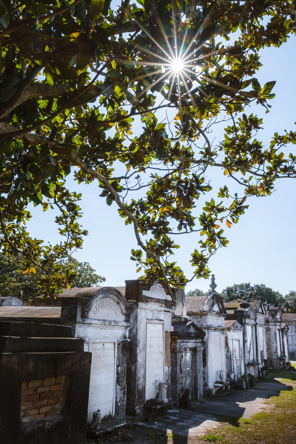 "Lafayette Cemetery - Travel photography and guide by © Natasha Lequepeys for ""And Then I Met Yoko"". #neworleans #nola #photoblog #travelitinerary #fujifilm #cemetery"