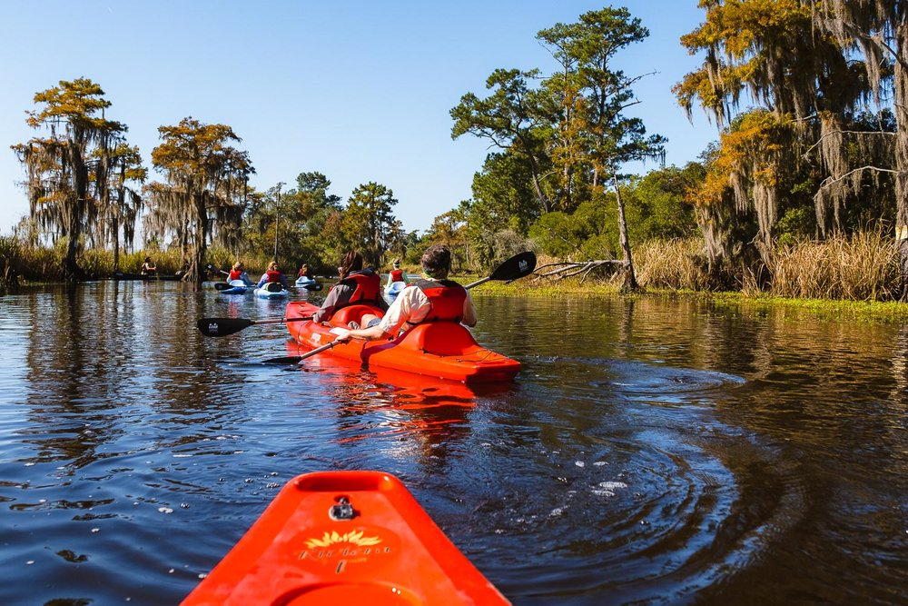 "Kayaking on the Cane Bayou, New Orleans. Travel photography and guide by © Natasha Lequepeys for ""And Then I Met Yoko"". #neworleans #nola #travelguide #photoblog #travelblog #travelphotography #travelitinerary #fujifilm #usa #visitnola #weekendgetaway #travel #neworleans3dayitinerary #nature #kayaking #outdoors #getoutdoors #kayak #canebayou #bayou"