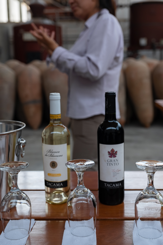 "Tacama Winery in Ica, Peru. Travel photography and guide by © Natasha Lequepeys for ""And Then I Met Yoko"". #huacachina #photoblog #travelblog #winery #fujifilm #blogger #vineyards"
