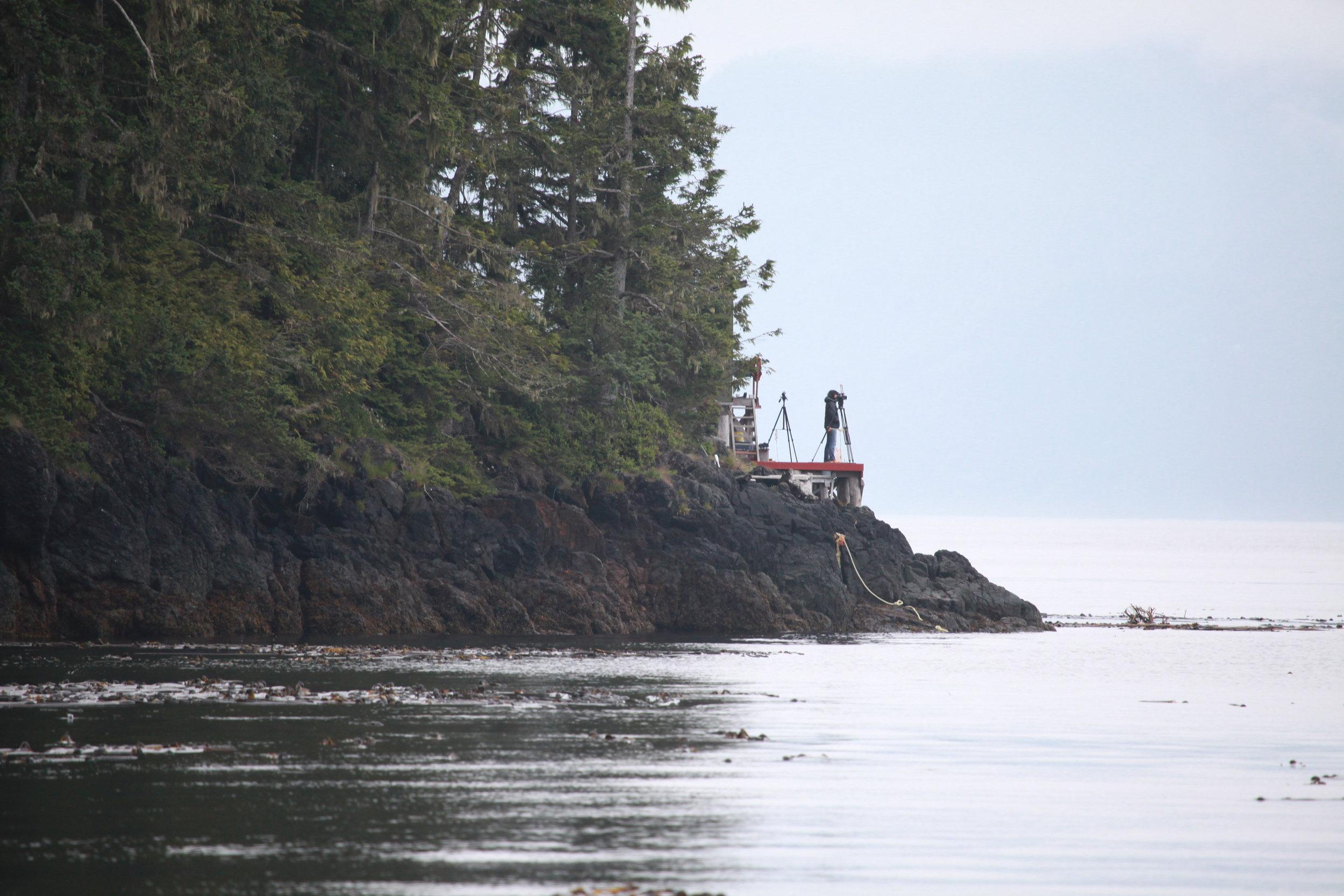 Cracroft Point: orca-live.com webcam