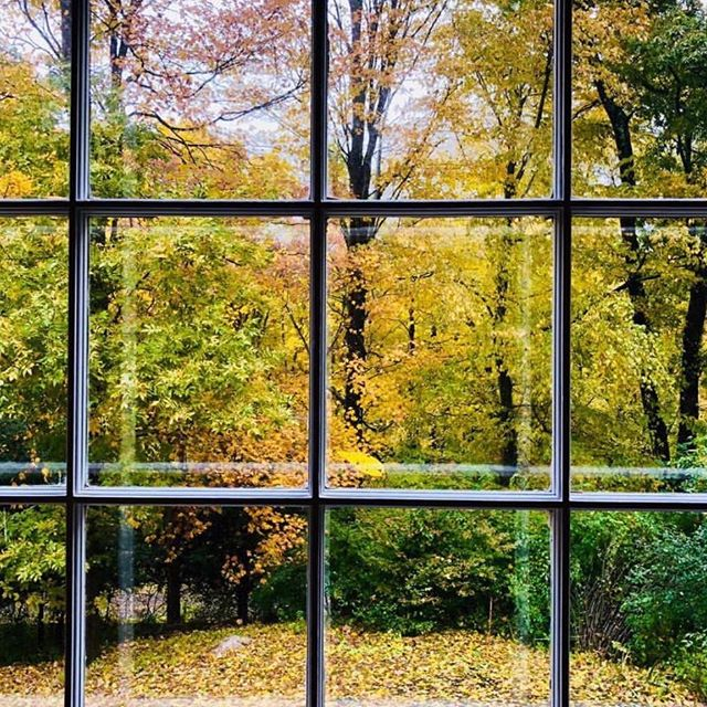 Monday morning views...bringing outdoor colors in. This Autumn feels particularly transformational and abundant. A big week is ahead! 🧡🔝