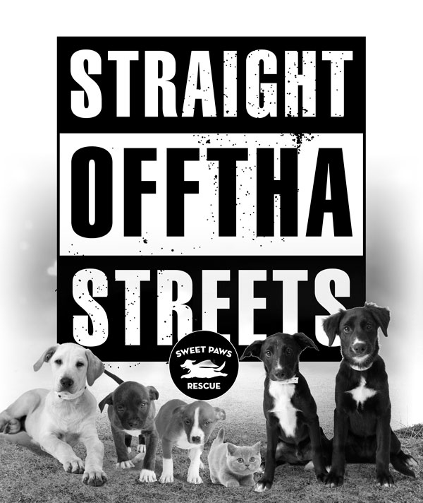 offtha_street_dogs-final_web.jpg