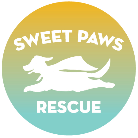 Adoptable Cats — Sweet Paws Rescue