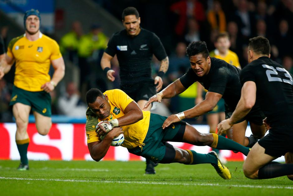 wallabies v all blacks image.jpg