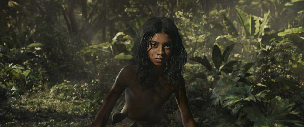 mowgli-woods.jpg