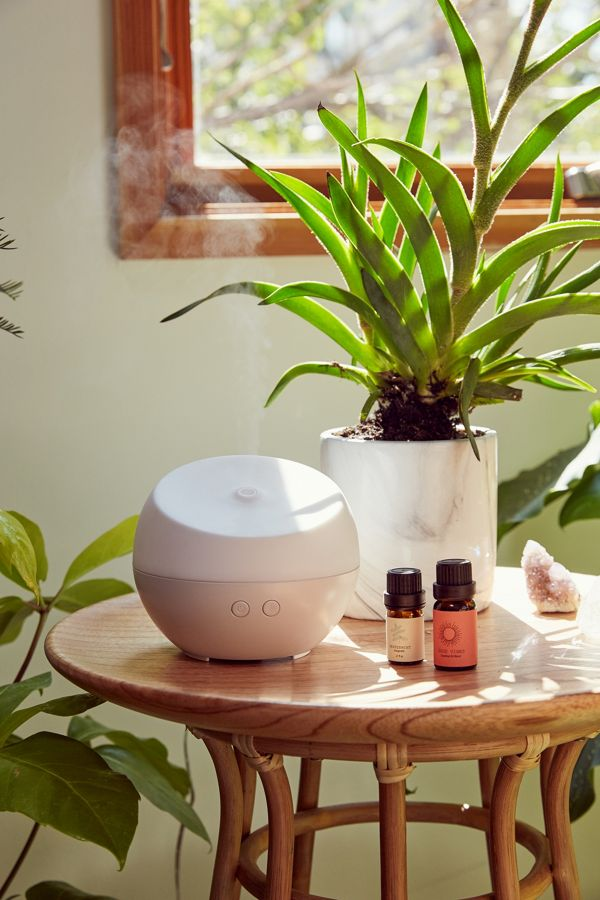 Essential Oil Diffuser - At $40, this essential oil diffuser comes with three different oils as a starter pack. It has different run times, so the receiver can adapt it to their liking. This gift is a great addition to the home, making the air smell great (it can even have some health benefits!). Check out this one we chose here.