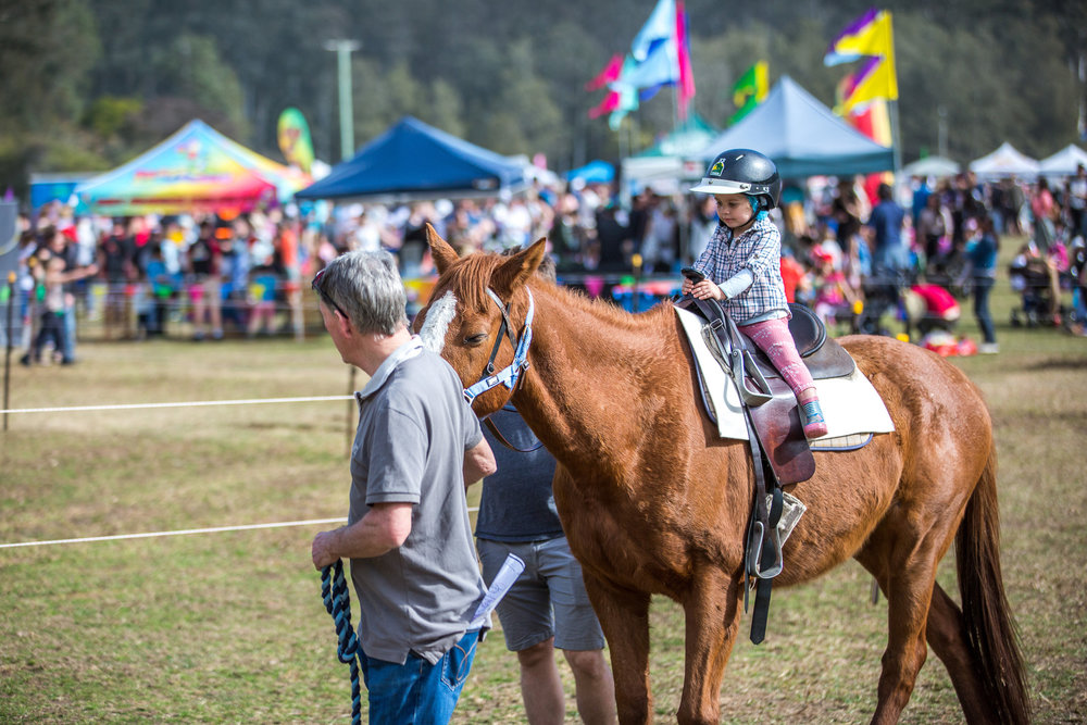 1193GVOA 2017 Horses BDay 0701 LR RGB FA.jpg