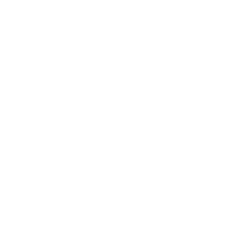 Central Coast Council - White logo.png