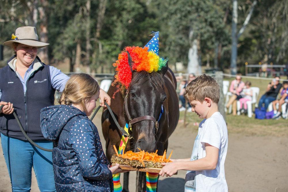 1406GVOA 2018 Horses BDay 0890 LR RGB FA.jpg