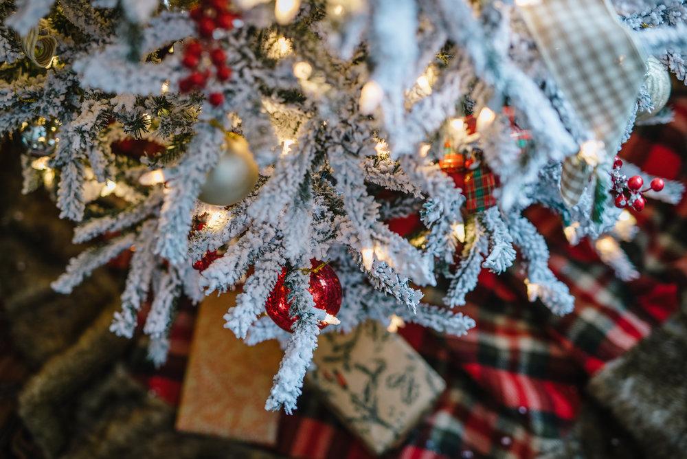 christmas18-154.jpg