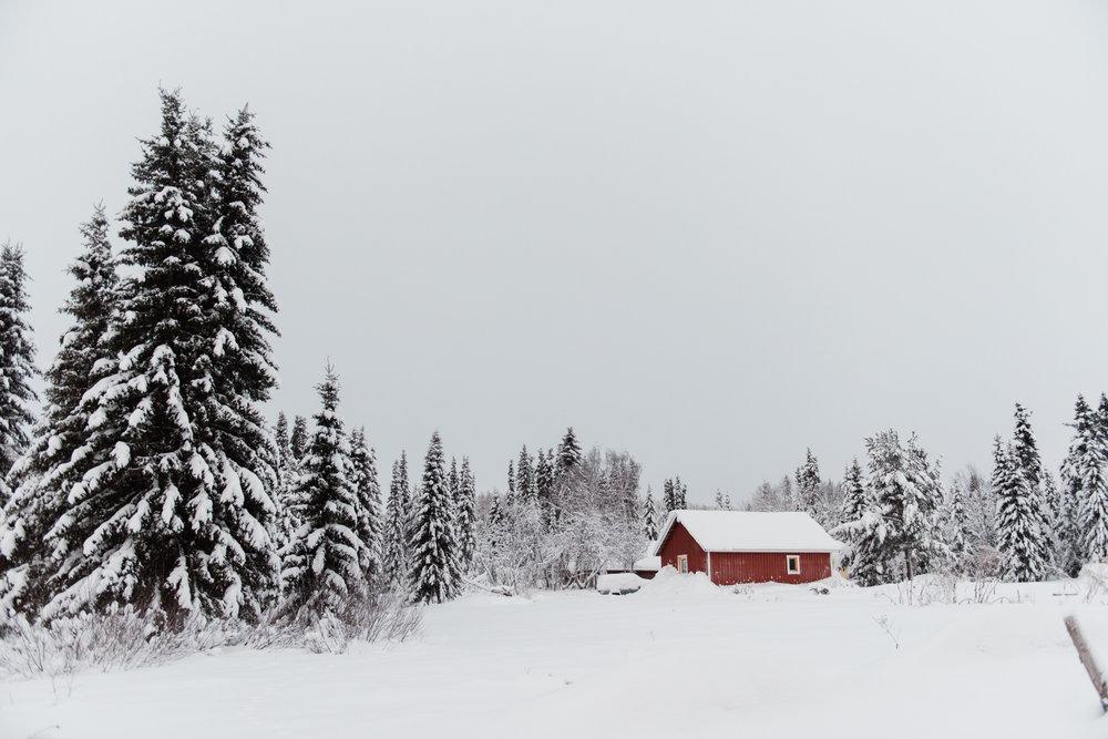 sweden-67.jpg