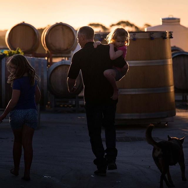Schwarz Wines, Barossa Valley 🌫 . Cheeky regram of this gorgeous photo of Jason Schwarz and his kids. This man crafts forward thinking wines from classic varietals in the Barossa, using Euro thinking to allow the old vineyards to do the talking . Available in SA exclusively via Vinify Wine Co . @schwarzwineco