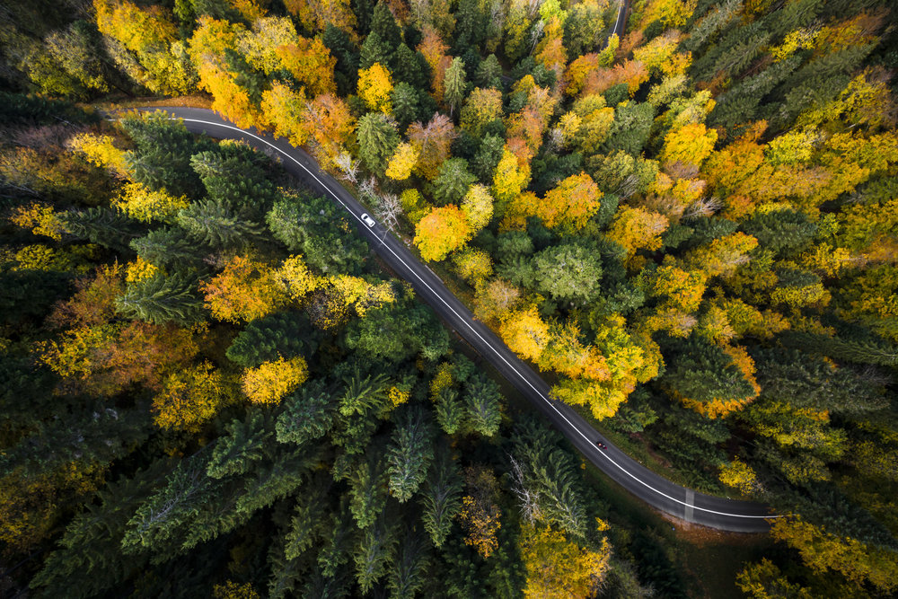 A car drives through the forest on a windy road in la Chaux-de-Fonds, Switzerland, Thursday, October 12, 2017. (KEYSTONE/Valentin Flauraud)