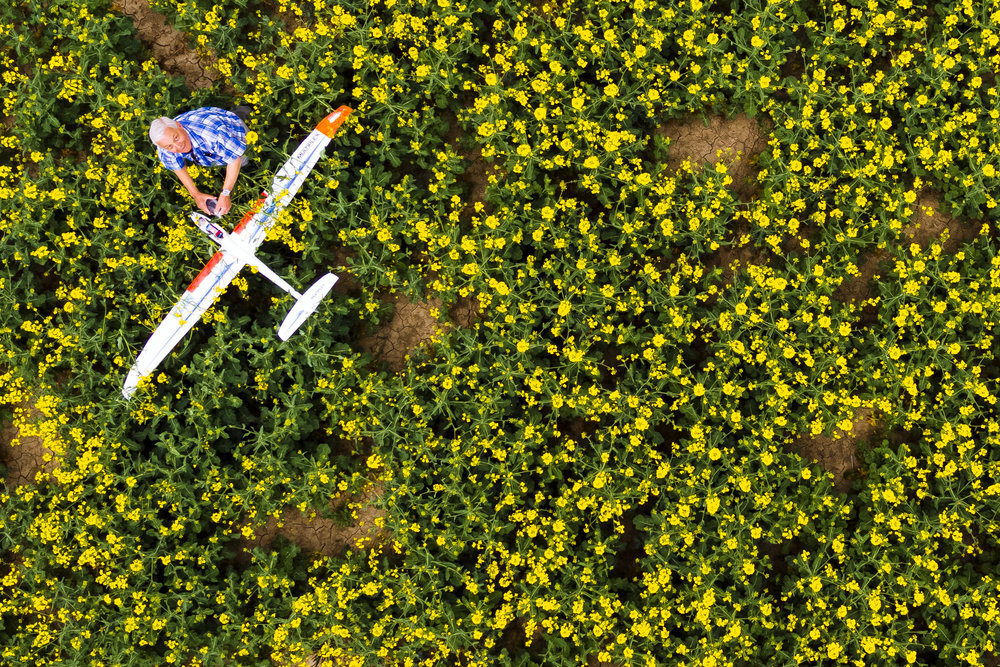 A man retrieves his model glider airplane after it crashed in a rapeseed field in Bottens, Switzerland, Sunday, April 29, 2018. (KEYSTONE/Valentin Flauraud)