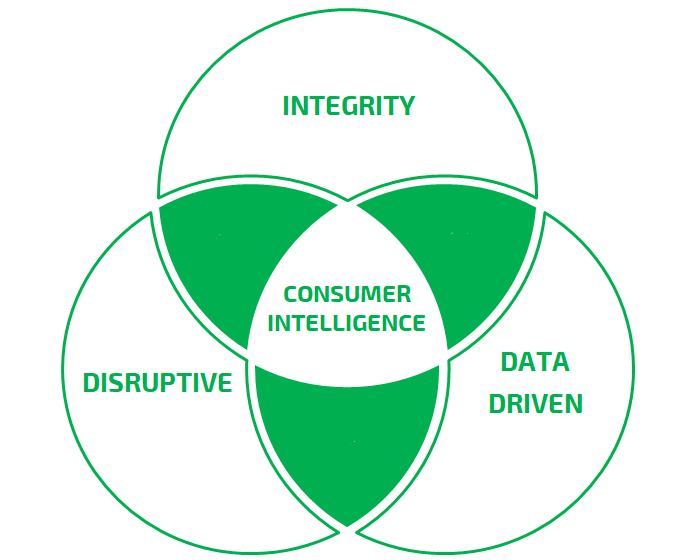 Core Values - These guiding principles dictate our behavior and help us understand the difference between right and wrong. These values also help us to determine if we are spearheading Consumer Intelligence through best possible practices and fulfilling our goals by creating an unwavering guide.