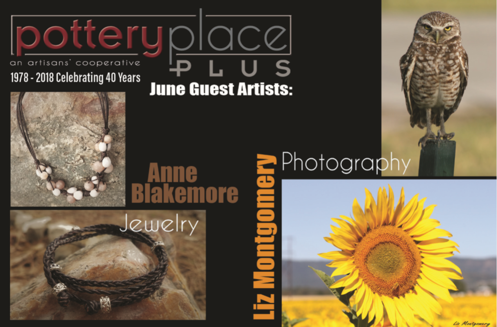 OIL EXPRESSIONS by Anne Blakemore