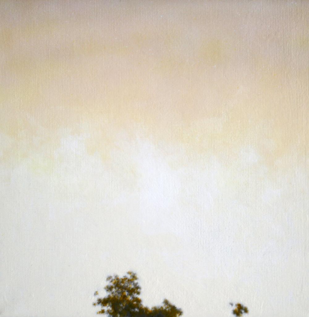 IAN GRANT  Tree Tops II , 2018 acrylic on linen 30 x 30 cm