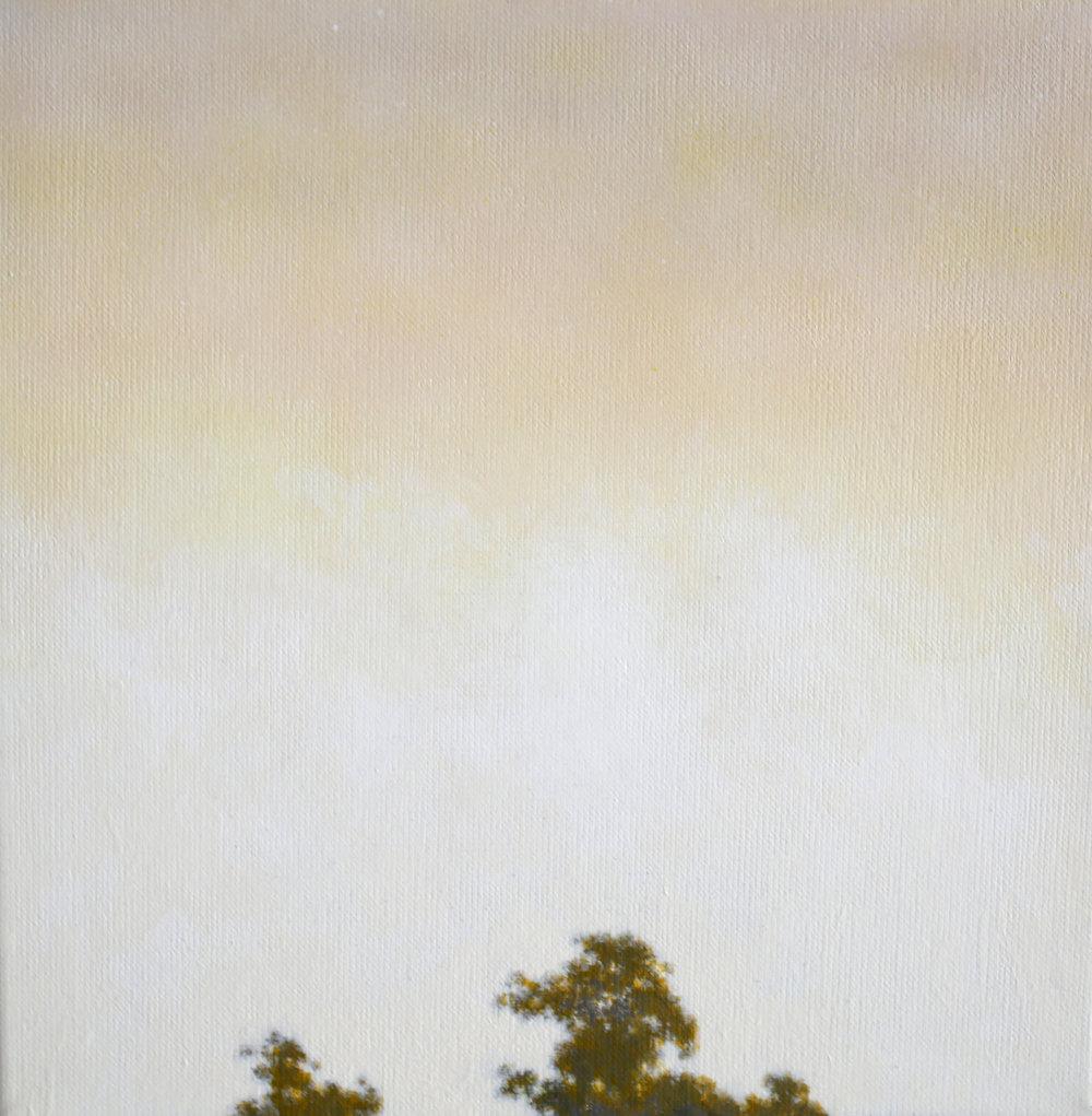 IAN GRANT  Tree Tops I , 2018 acrylic on linen 30 x 30 cm