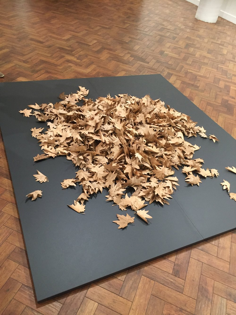 NICK COLLERSON  1000 Leaves , 2018 hand cut and painted paper leaves dimensions variable