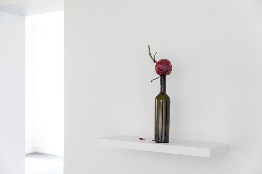 1/11. Simone Forti, Onion Walk and News Animation (Rehearsal), installation view, ReadingRoom, Melbourne, 2018