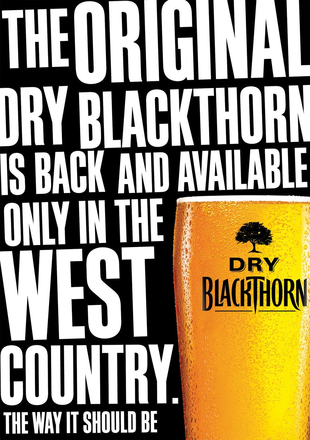 Dry Blackthorn | Designer | by James-Lee Duffy