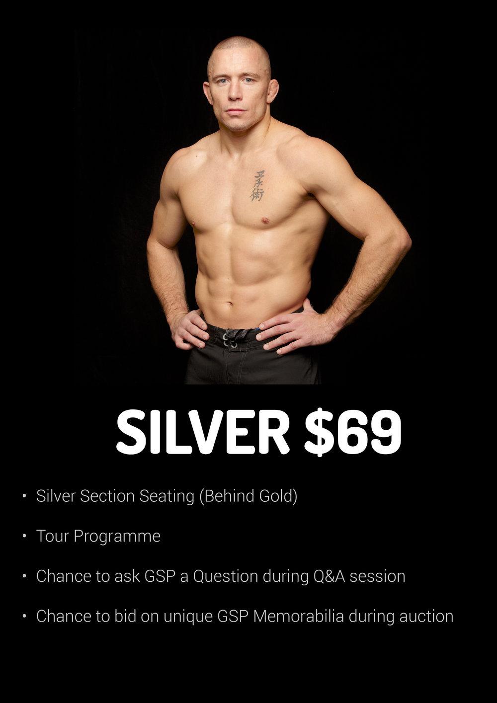 GSP Silver V2.jpg