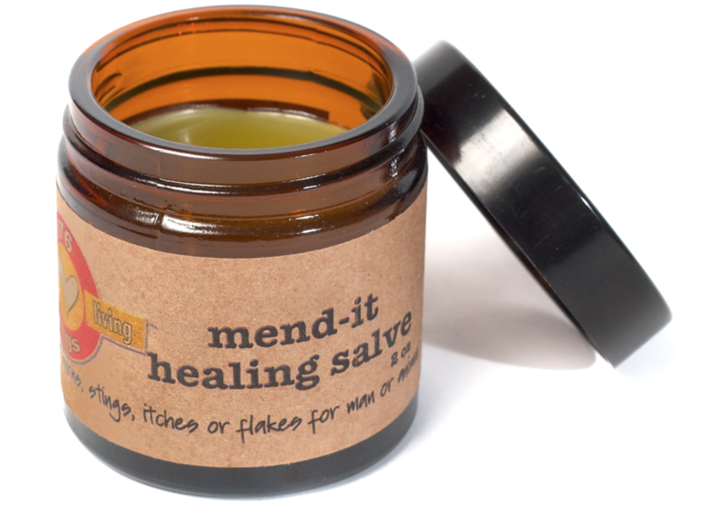 Mend-it Healing Salve from Earth Dog