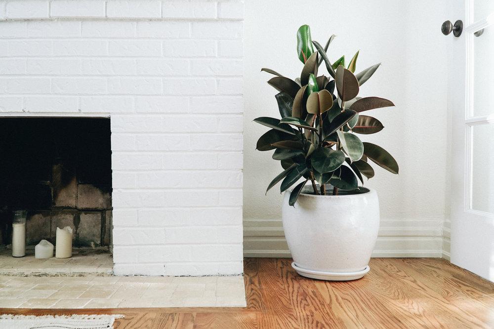 Feel comfortable furnishing your home. -