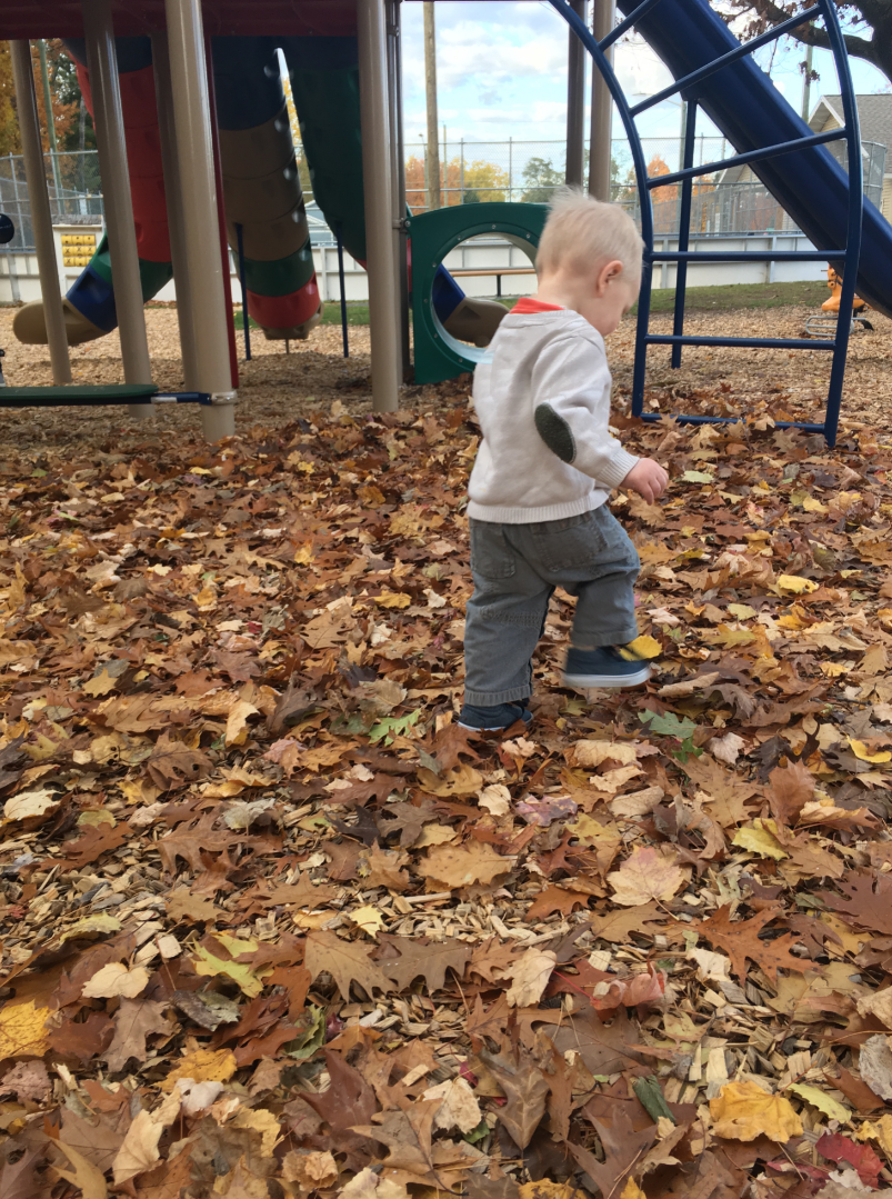 Our baby boy enjoying the leaves.