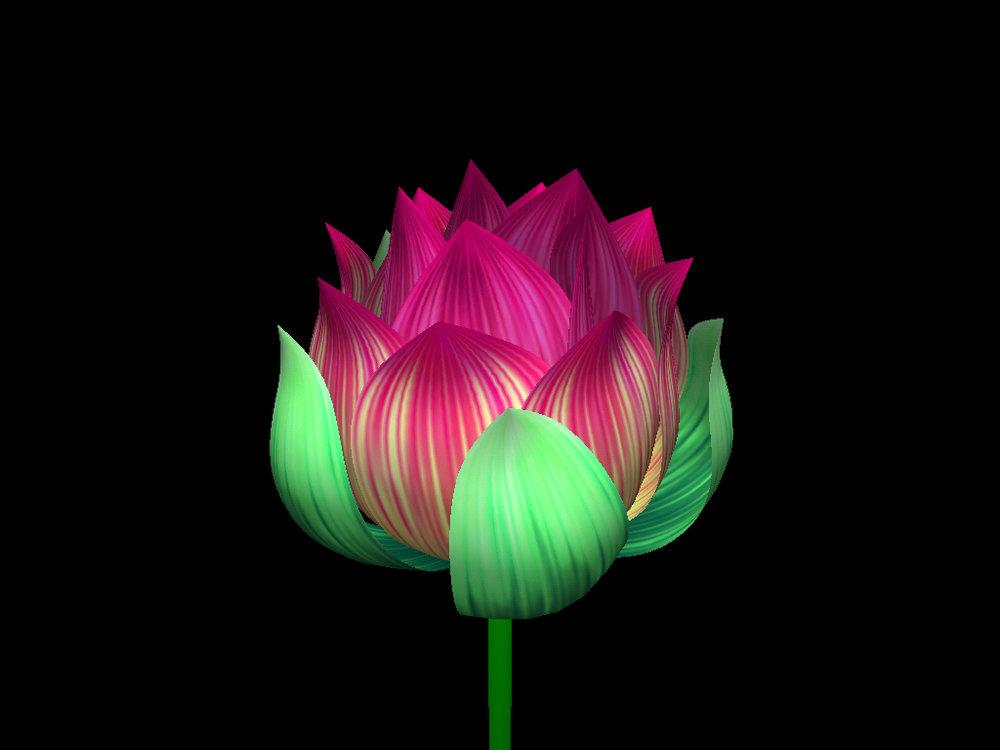 HelloFlower-Lotus.jpg
