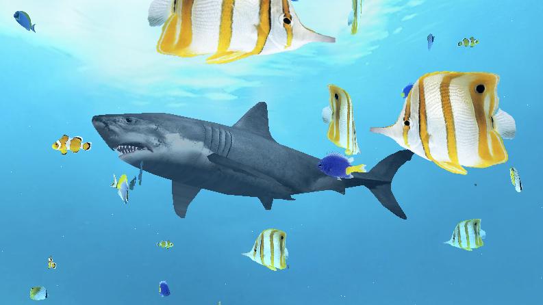 Shark1a.jpg