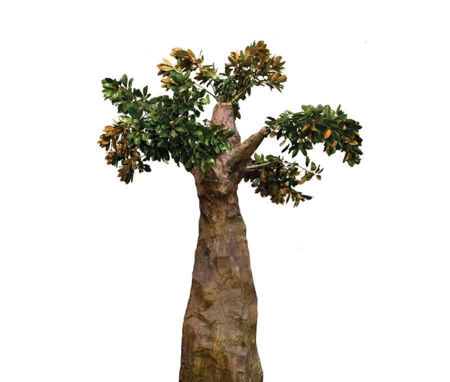 artisan_tree-02.jpg