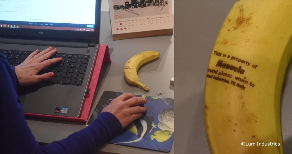 Banana_LT.jpg