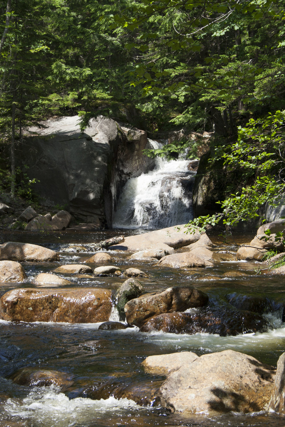 Swimming hole at the beginning/end of the hike to Angel Falls