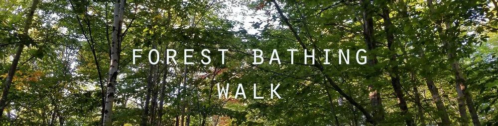 forest+bathing.jpg