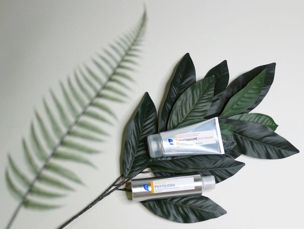 Phyto Leaf 2.jpg