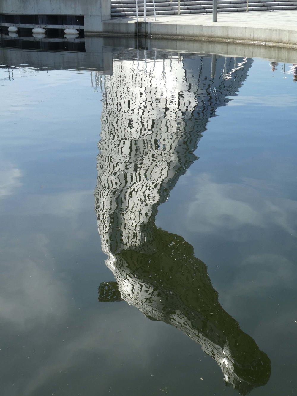 Reflecting on a Kelpie