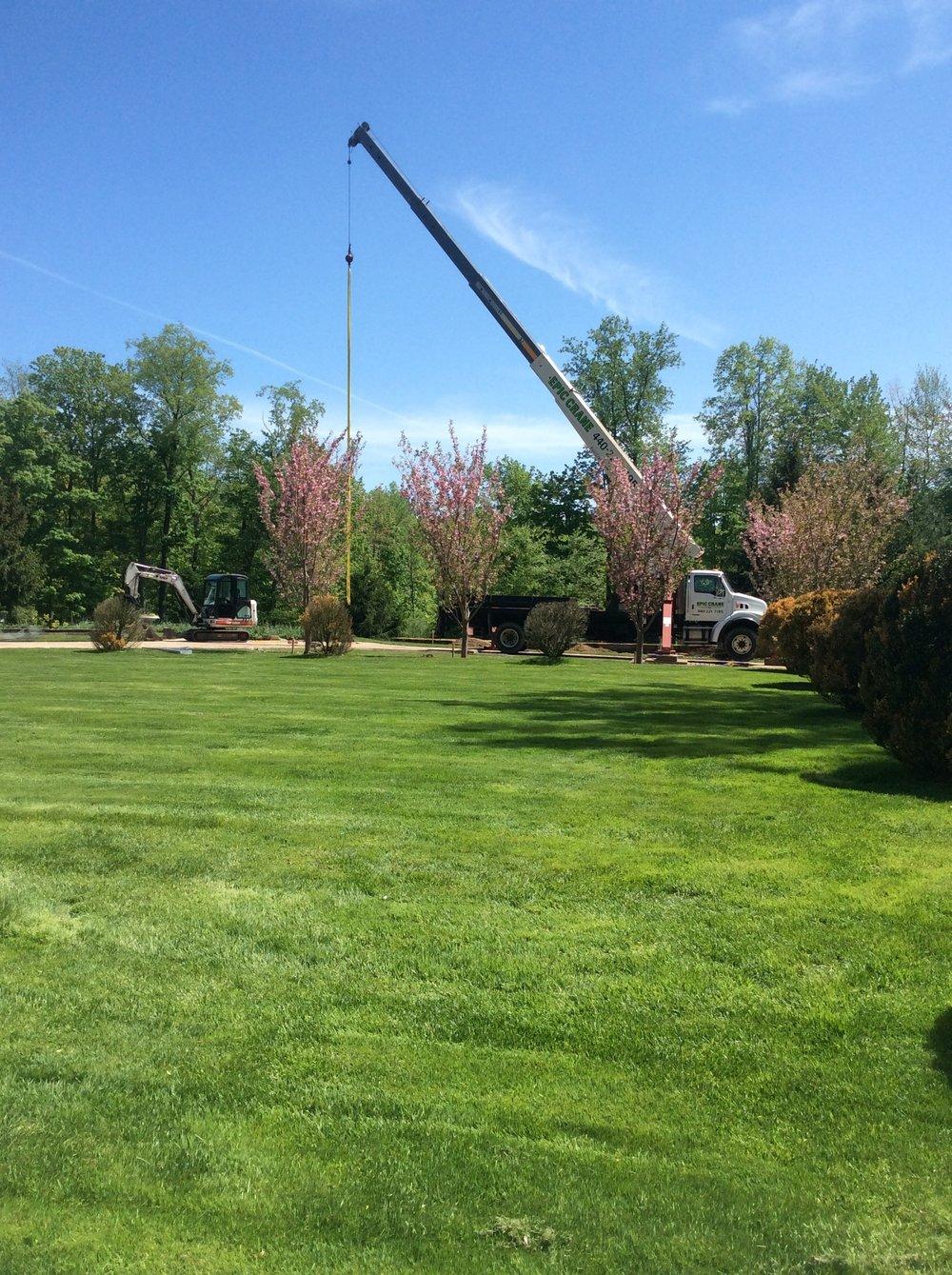 Unilock tree care company in Hudson, OH