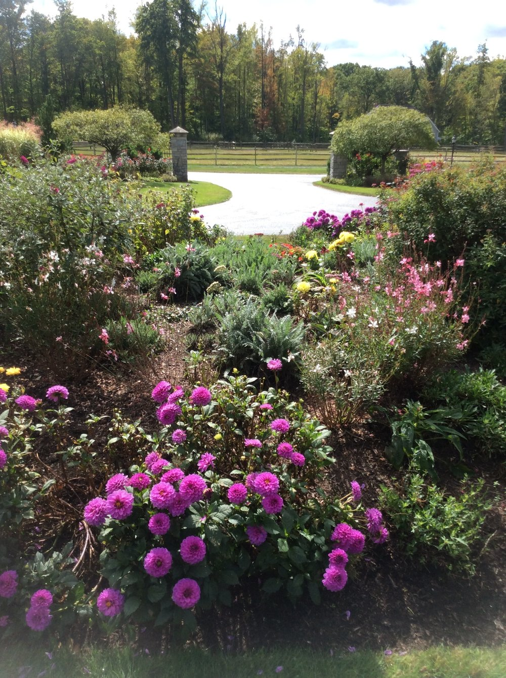 Unilock certifed landscape company in Chagrin Falls OH