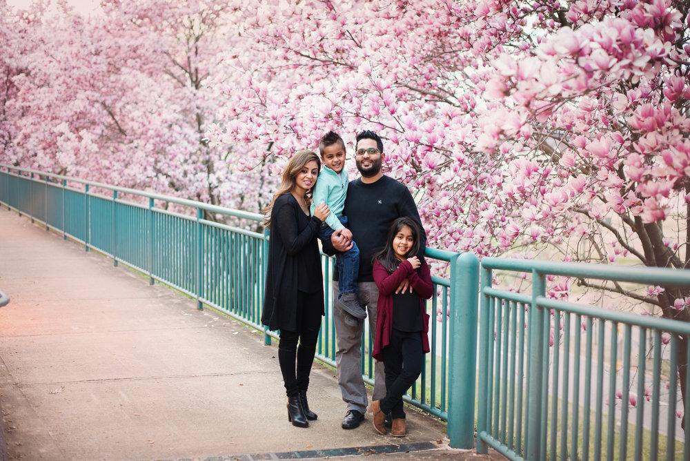 memphisfamilyphotographerpatel-87.jpg
