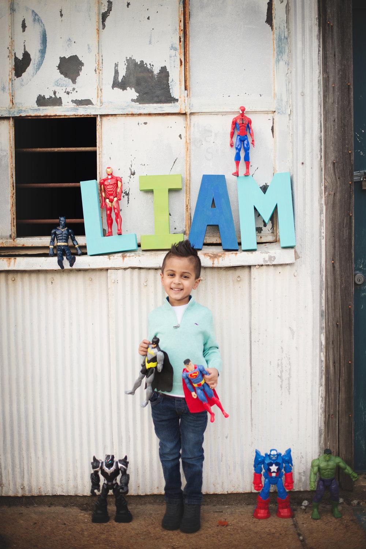 memphisfamilyphotographerpatel-62.jpg
