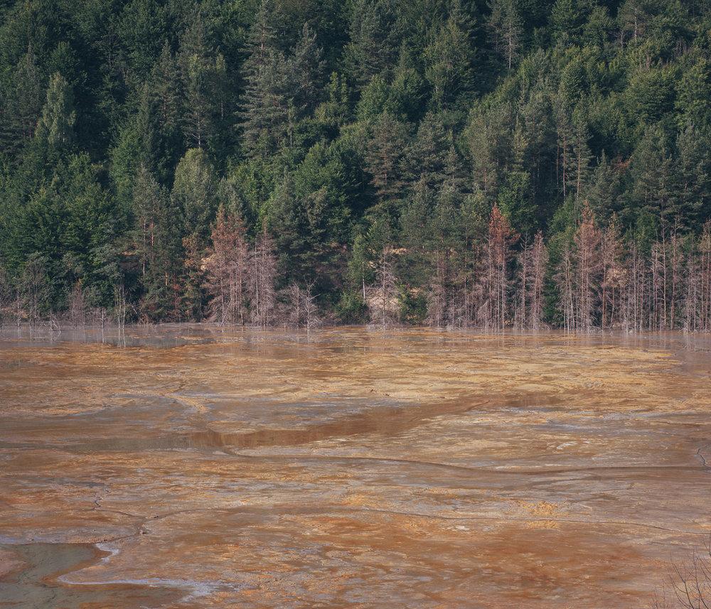 Anfang der 2000er Jahre hat der kanadischen Konzern Gabriel Resources die Rechte zum Betreiben einer Goldmine erworben, zum Abbau soll hochgiftiges Zyanid verwendet werden.